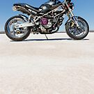 Ducati Monster on the salt 2 by Frank Kletschkus