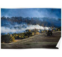 Forest fire, Tasmania, Poster