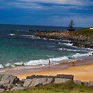 Australian Summer  by MattyWerts