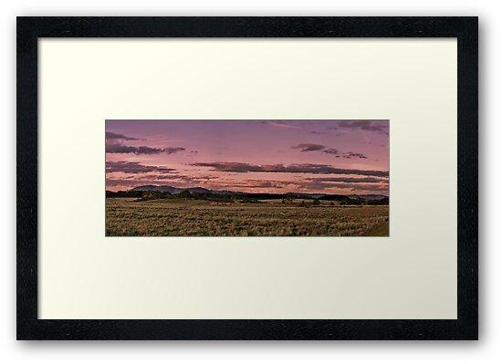 Mt William, Lancefield.  by Kylie Mckay