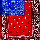 American Flag by Ladunni Lambo