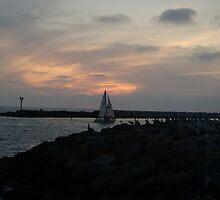 Sunset at Redondo Beach Pier by Roxiep