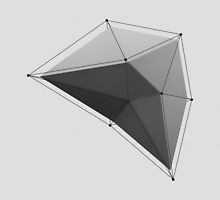 White Polygon by error23
