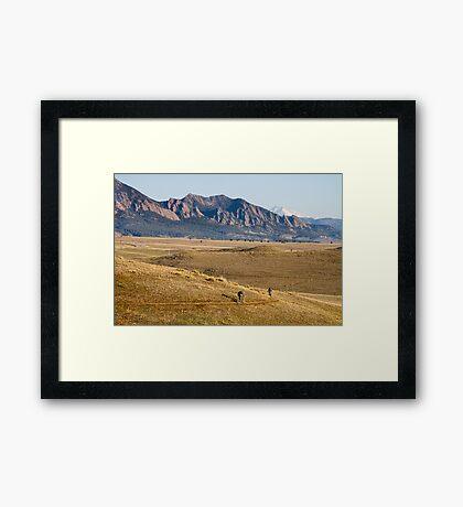 Colorado Mountain Biking Fun Framed Print