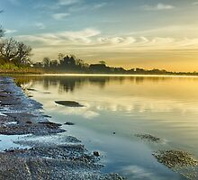 An April morning on the Estuary by Martina Fagan