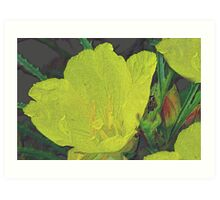 Penciled Wildflower Art Print