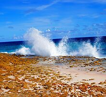 Waves Crashing by emilyduwan
