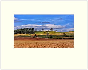 Fields, Nottinghamshire by jrsisson
