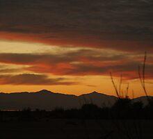 Sunset at Salton Sea, Ca by Roxiep