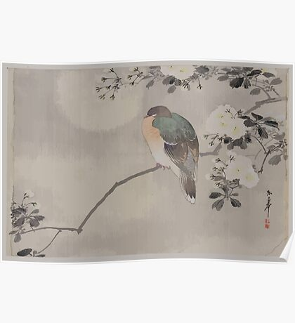 Bird perched on a branch of a blossoming tree 001 Poster