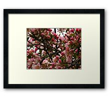 Expressions in pink Framed Print