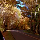 Fall in Gatlinburg by Jonathan Hill, Jr.
