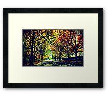 Autumn In Canberra Framed Print
