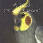 Duke, portrait of a cockatiel by © Cindy Schnackel