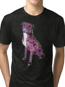 Pit Bulls May Lick You To Death Tri-blend T-Shirt