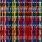 02290 Count Cants Nameless Tartan Fabric Print Iphone Case by Detnecs2013