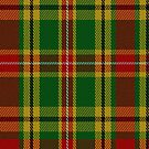 02293 Picante Nameless Tartan Fabric Print Iphone Case by Detnecs2013