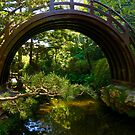Drum Bridge by Barbara  Brown