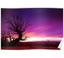 The Beckon Tree Poster