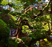 Bridge Through the Trees by Barbara  Brown
