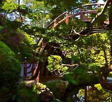 Bridge Through the Trees by Barbara  Brown