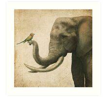 A New Friend (colour option) Art Print