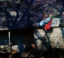 Broken Old Place by Ginger  Barritt