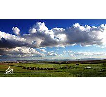 Algerian Landscape Photographic Print