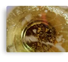 wormhole to the other cider of the universe Canvas Print