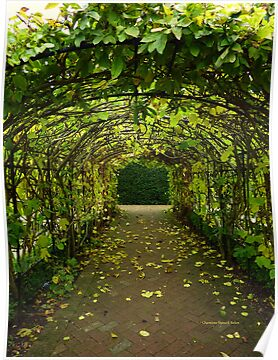 Archway at Buckfast Abbey by Charmiene Maxwell-batten