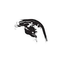 H // Black on White by schiggityschway