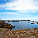 The Long Pier by John Sharp