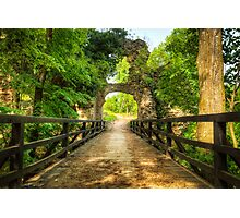 Wooden bridge through the green forest Photographic Print