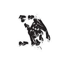 Z // Black on White by schiggityschway