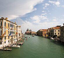 Venice 8081 by Neil Osborne