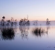 at lake fyans by ketut suwitra