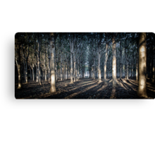 Dwarfed Canvas Print