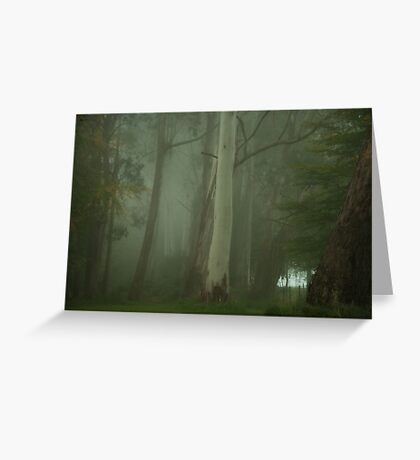 Mistical - Mount Wilson, NSW Australia Greeting Card