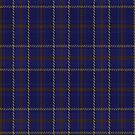 02295 Blue Daks Tartan Fabric Print Iphone Case by Detnecs2013