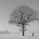 Up by redtree