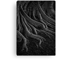 entrenched Canvas Print