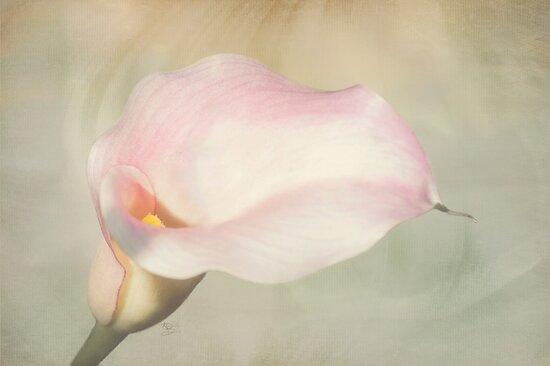 Nature's Grace by KBritt