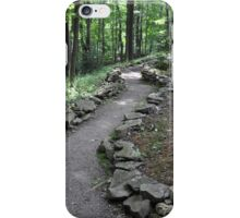 The Path Into the Forest iPhone Case/Skin