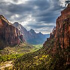 From Angel's Landing Trail by Shane Moss