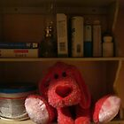 Red Dog Kept On A Shelf by Guy Ricketts