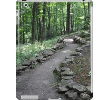 The Path Into the Forest iPad Case/Skin