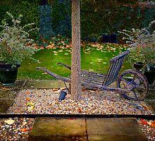 Small garden by DmiSmiPhoto