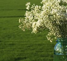 Baby's Breath in a Jar by Kelly Chiara