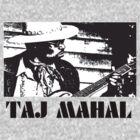 Taj Mahal by AlexanderPip