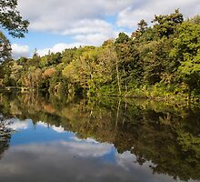 Castlecomer Lakes by Martina Fagan